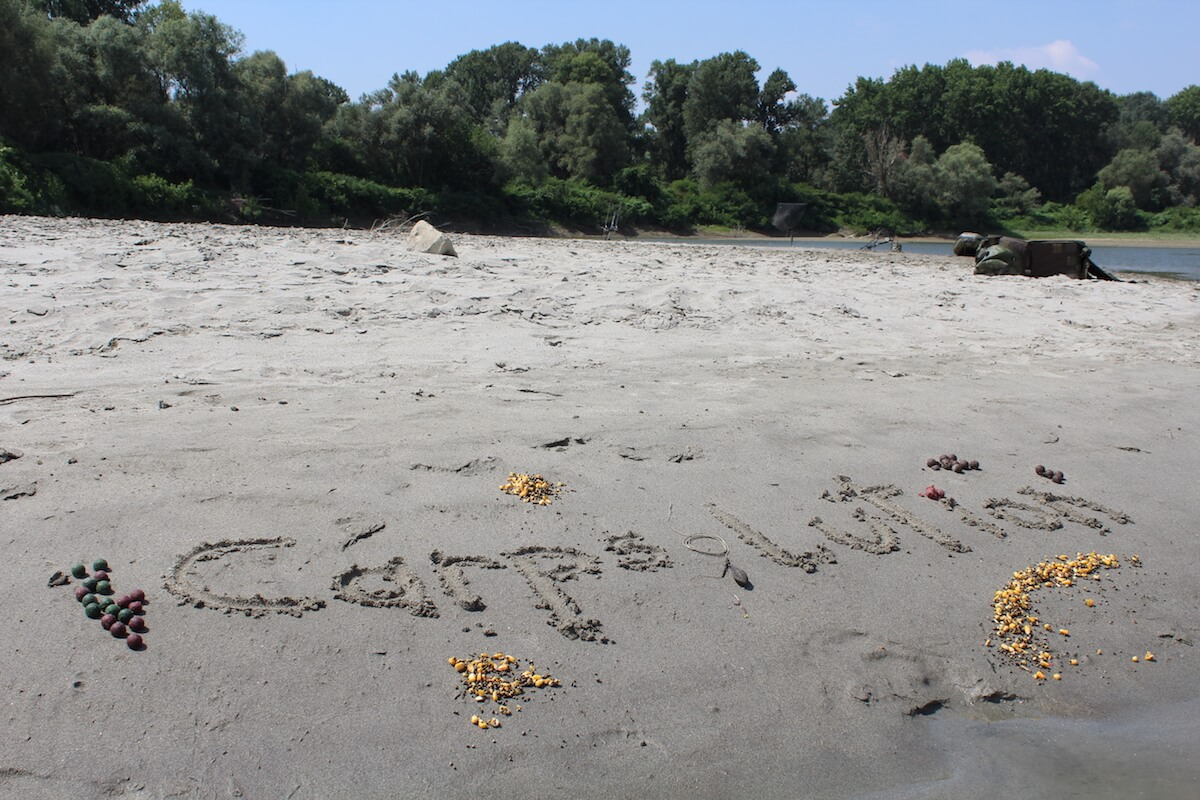 Carpsolution Logo im Sand