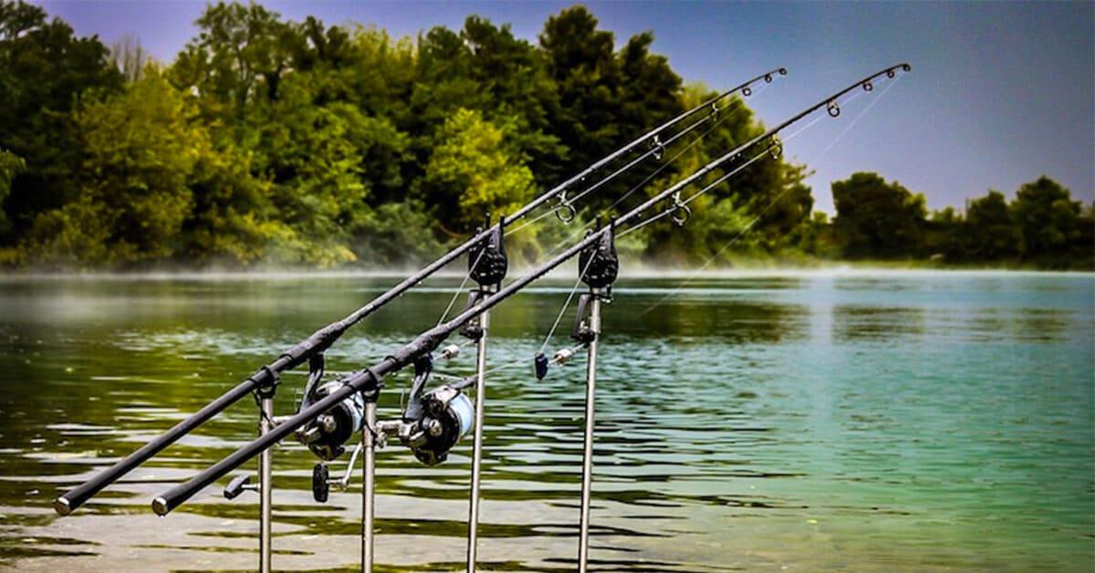 Karpfenangeln Atlantide Fishing Resort