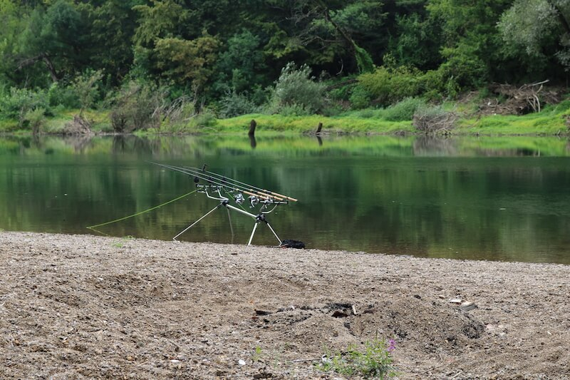 Karpfenangeln an Flüssen