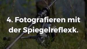 Fotografieren mit der Spiegelreflexkamera