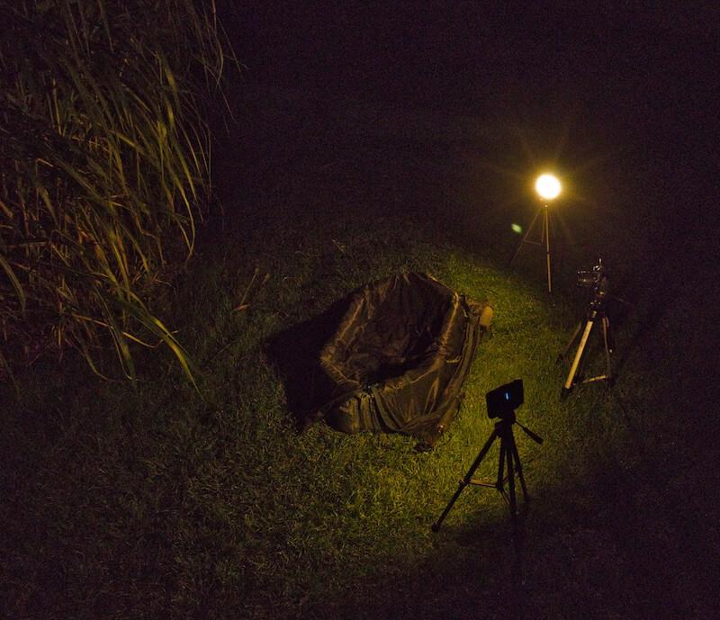 Nachtfotografie beim Karpfenangeln Aufbau